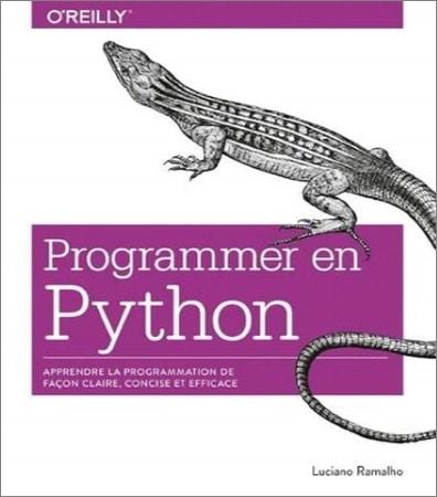 Livre programmation python bible complet pour programmer efficacement langage informatique top5